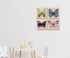 Foto de Set de 4 cuadros | Mariposas