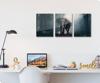 Foto de Set de 3 cuadros | Elefante