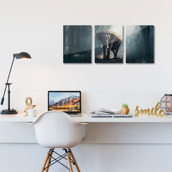Picture of Set de cuadros acrílico | Elefante