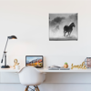 Picture of Cuadro canvas  | Caballos BN