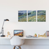 Picture of Set de Cuadros canvas | Campo Van Gogh